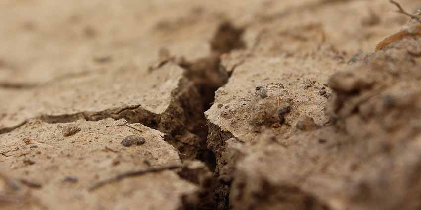 Divorce and Property - Molae Properties - Image of a split in the ground.